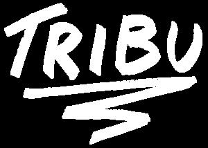 Identité Graphique Tribu